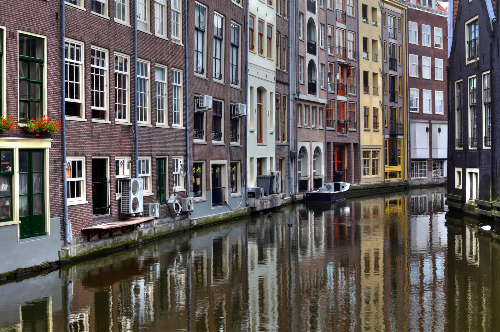 Hollanda Peynirlerinin Özellikleri