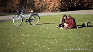 Parkta İsveçliler