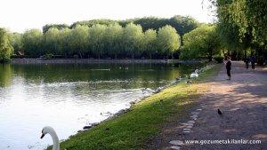 Pildamsparken büyük göleti