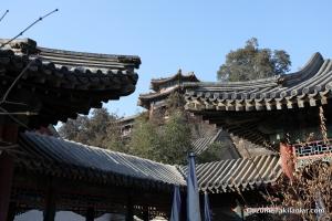 Çin çatıları